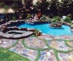 Swan Pool